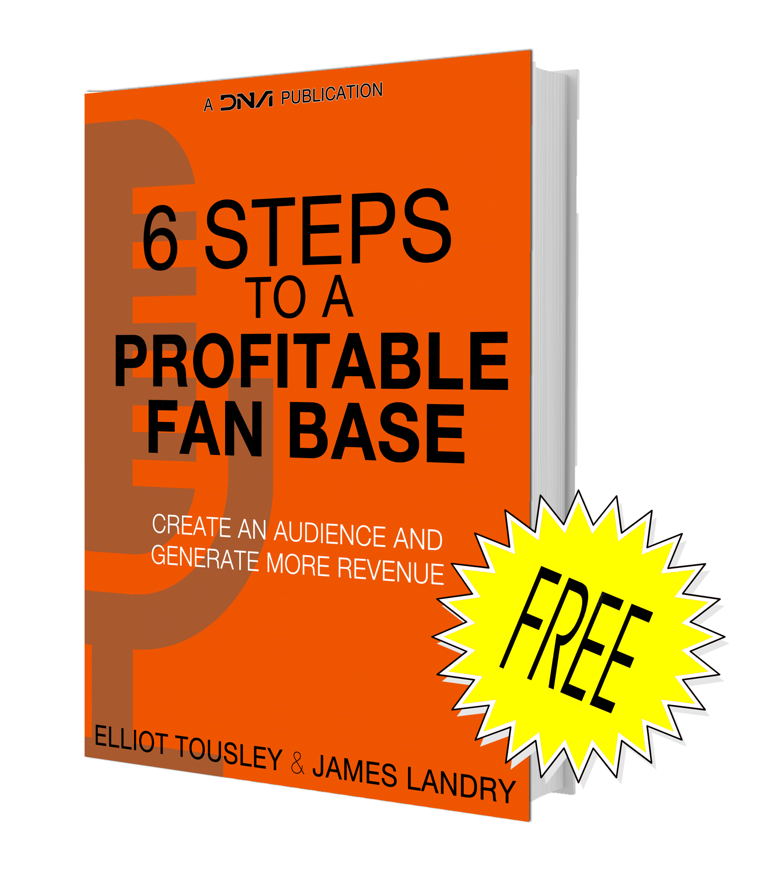 De Novo Agency, 6 Steps to a Profitable Fan Base, Grow a Fan Base, Grow an audience, music marketing, Playlist placements, spotify promotion